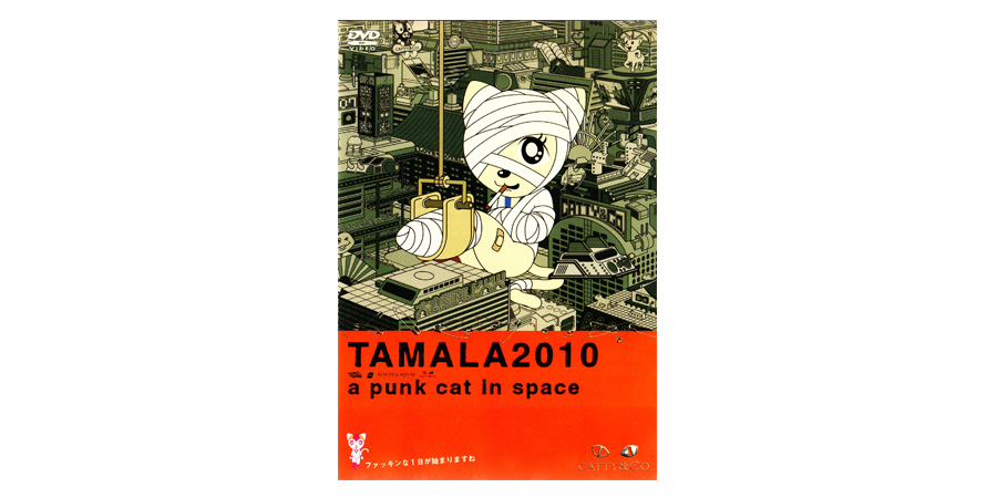 Tamala 2020 cat rounded by bandage